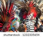 mexico city  mexico   december... | Shutterstock . vector #1232335654