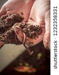 earthworm in hand | Shutterstock . vector #1232358331