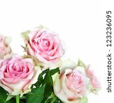 bouquet of pink roses  isolated ... | Shutterstock . vector #123236095