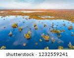 aerial shot of yelnya swamp ... | Shutterstock . vector #1232559241