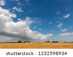wide wheat field under... | Shutterstock . vector #1232598934