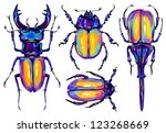 beetle collection   Shutterstock . vector #123268669