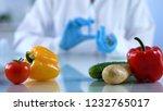 genetic breeding of vegetables... | Shutterstock . vector #1232765017