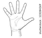 hand drawn men's palm | Shutterstock .eps vector #123284269