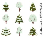 spruce and deciduous trees... | Shutterstock .eps vector #1232892664