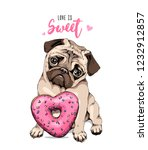 Stock vector card of a valentine s day adorable puppy pug with a pink heart donut love is sweet lettering 1232912857
