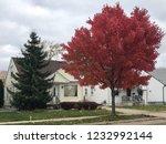 dearborn  michigan november 8 ... | Shutterstock . vector #1232992144