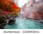 japanese hot springs onsen... | Shutterstock . vector #1233053011