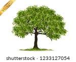 isolated trees on white... | Shutterstock .eps vector #1233127054