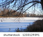 autumn forest  late fall season.... | Shutterstock . vector #1233129391