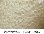 extreme shot of skin white... | Shutterstock . vector #1233137587