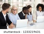 serious focused diverse office... | Shutterstock . vector #1233219631