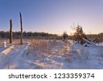 winter landscape with field at... | Shutterstock . vector #1233359374