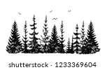 hand drawn sketch of pine... | Shutterstock .eps vector #1233369604