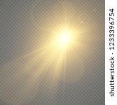 gold glowing light.vector... | Shutterstock .eps vector #1233396754