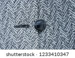 one black button on woolen... | Shutterstock . vector #1233410347