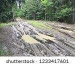 so dirty forest road   Shutterstock . vector #1233417601