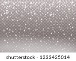 white sparks and stars glitter... | Shutterstock .eps vector #1233425014