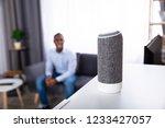 close up of wireless speaker on ...   Shutterstock . vector #1233427057