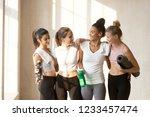 diverse multi ethnic slim women ... | Shutterstock . vector #1233457474