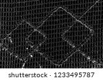 abstract background. monochrome ... | Shutterstock . vector #1233495787