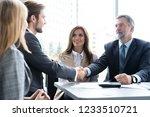 business people shaking hands ...   Shutterstock . vector #1233510721