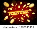 the gold word fortune ... | Shutterstock .eps vector #1233519451