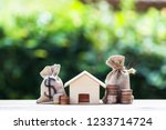home loan  mortgages  debt ... | Shutterstock . vector #1233714724