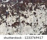 very old  faded white wall... | Shutterstock . vector #1233769417