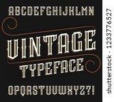 vintage alphabet font. ornate... | Shutterstock .eps vector #1233776527