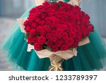 Small photo of Large bouquet of 101 red rose in woman hands.