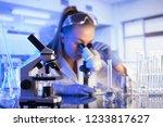 laboratory concept. scientist... | Shutterstock . vector #1233817627