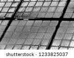 abstract background. monochrome ... | Shutterstock . vector #1233825037