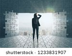 back view of young... | Shutterstock . vector #1233831907