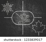 image relative to canada hockey....   Shutterstock . vector #1233839017