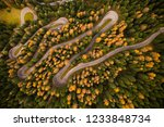 curvy road in atumn forest  top ... | Shutterstock . vector #1233848734