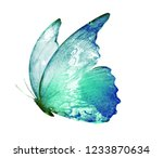 Stock photo watercolor butterfly isolated on white 1233870634