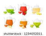 vector illustration set of... | Shutterstock .eps vector #1234052011