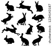 rabbit set isolated  vector... | Shutterstock .eps vector #1234143187