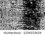 grunge overlay layer. abstract...   Shutterstock .eps vector #1234153624