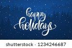 vector illustration ... | Shutterstock .eps vector #1234246687