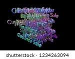 3d rendering. business or...   Shutterstock . vector #1234263094