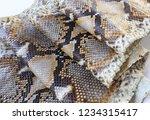 snake skin pattern | Shutterstock . vector #1234315417