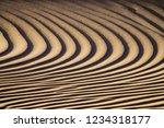 background texture of sand... | Shutterstock . vector #1234318177
