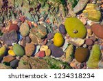close up view of multicolored... | Shutterstock . vector #1234318234