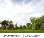green trees and blue white...   Shutterstock . vector #1234338094