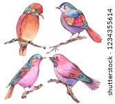 Stock photo set of colorful watercolors birds isolated on white background natural illustration watercolor 1234355614