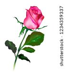 realistic vector pink rose with ... | Shutterstock .eps vector #1234359337