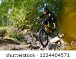 professional dh cyclist riding... | Shutterstock . vector #1234404571