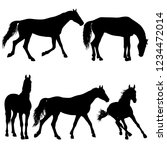 set animal silhouette of black... | Shutterstock .eps vector #1234472014
